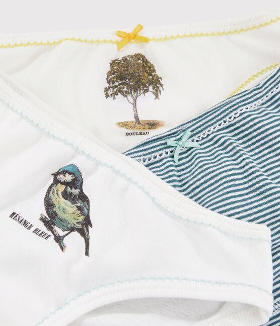 3er-Set Unterhosen aus Rippstrick für kleine Mädchen Petit Bateau x Deyrolle lot .