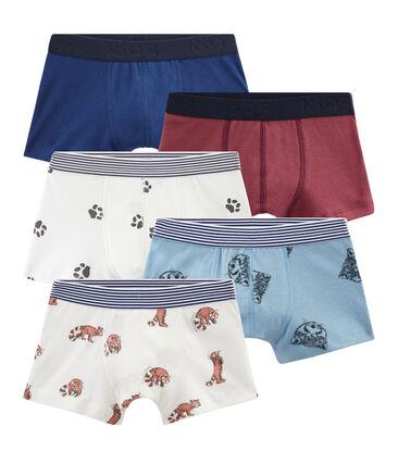 Set mit 5 Boxershorts für kleine Jungen lot .