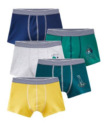 Set mit 5 Boxershorts für kleine Jungen